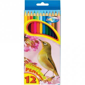 Карандаши цветные наточенные Centrum ZOO, длина 177 мм, 12 цв., картон. упаковка - Officedom (1)